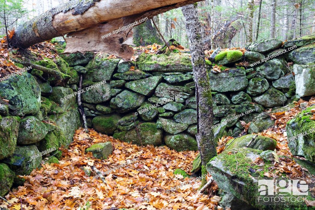 Stock Photo: The stone work of an abandoned cellar hole along the old North and South Road (now Long Pond Road) in Benton, New Hampshire.