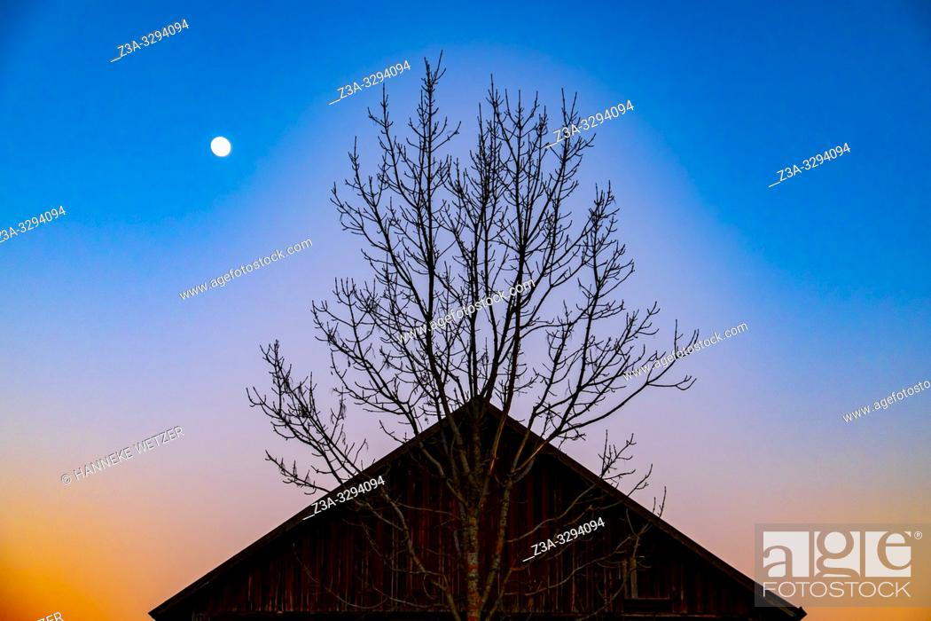 Stock Photo: Moonlight over the a rooftop and a tree in Sweden.