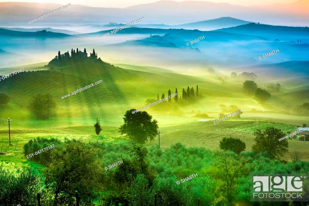 Imagen: Beautiful view of green fields and meadows at sunset in Tuscany.
