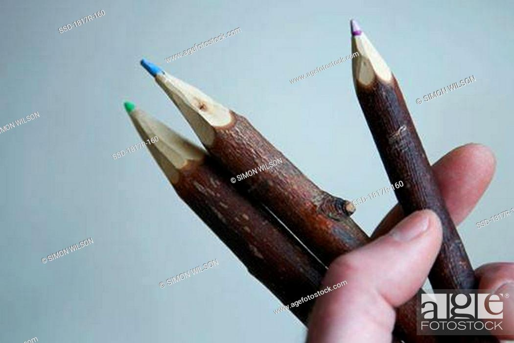 Stock Photo: Hand holding twig shaped pencil crayons.