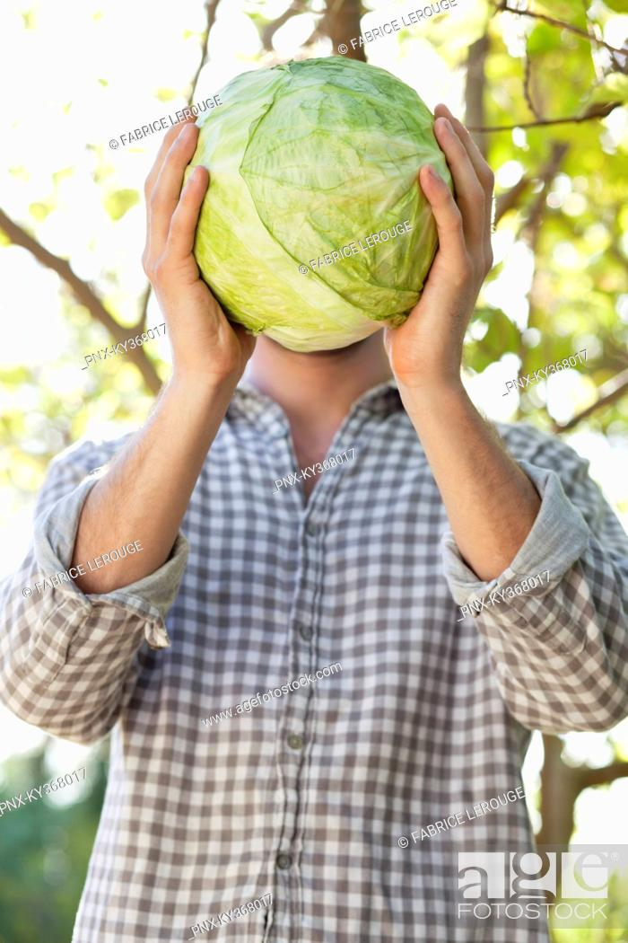 Stock Photo: Man holding a cabbage in front of his face.