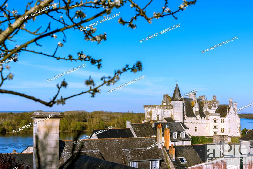 Stock Photo: Castle of Montsoreau, was built on the Loire in 1455, at the confluence of the Loire and Vienne rivers. Montsoreau (Labeled The Most Beautiful Villages of.