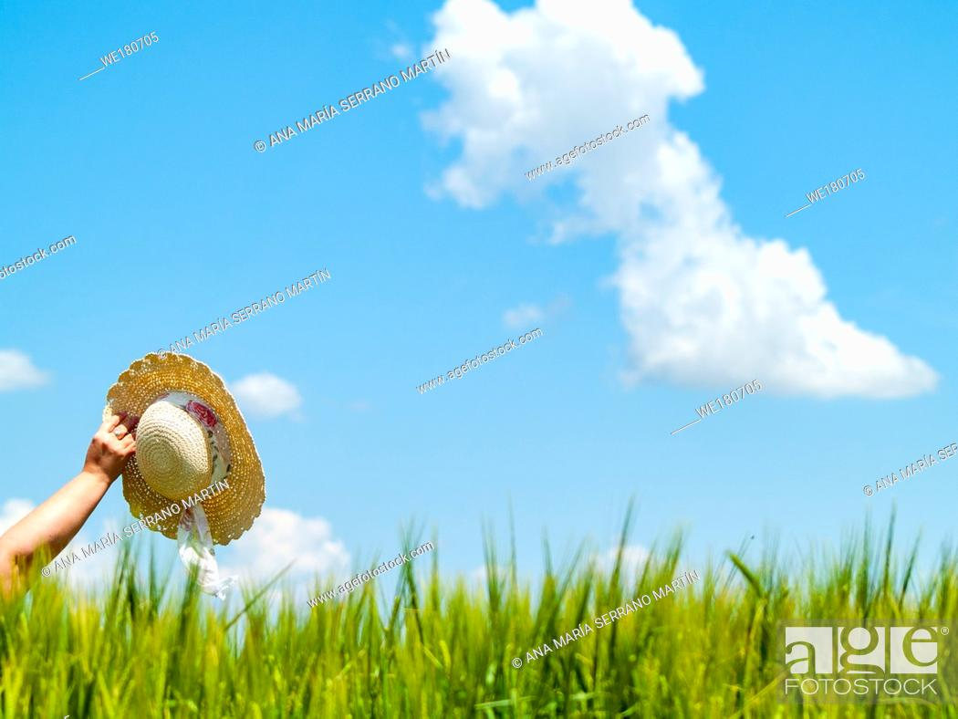 Stock Photo: Unrecognizable with a straw hat in his hand in a farm field in spring barley person.