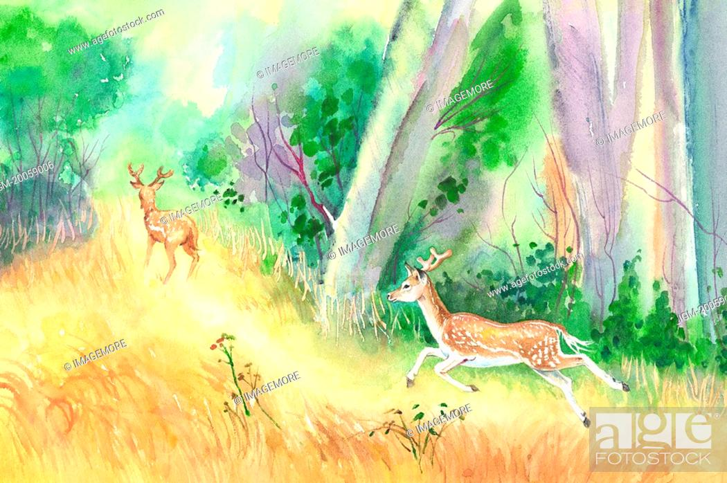 Stock Photo: Animal, Watercolor painting of two deer running in the woods.