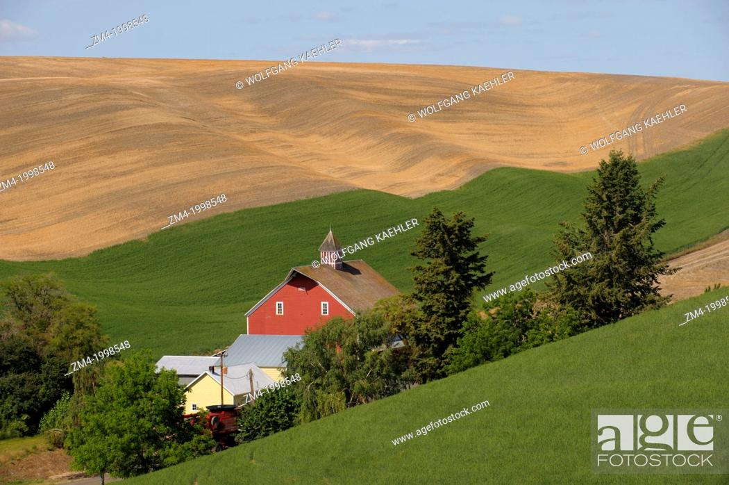 usa washington state palouse country near pullman view of rolling hills fields stock photo picture and rights managed image pic zm4 1998548 agefotostock https www agefotostock com age en stock images rights managed zm4 1998548