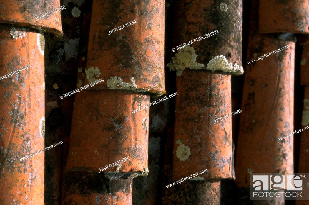 Stock Photo: Close-up of an arrangement of shingles.
