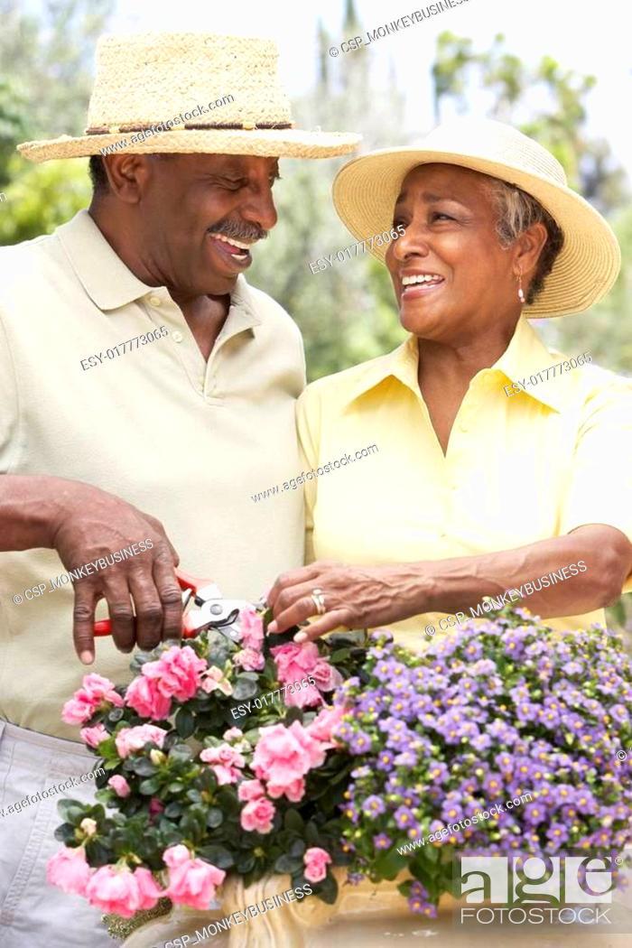 Stock Photo: Senior Couple Gardening Together.