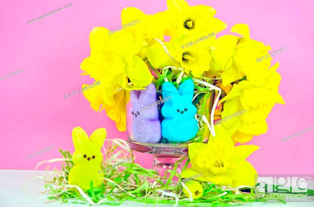 Stock Photo: Easter bunny candy with daffodil.