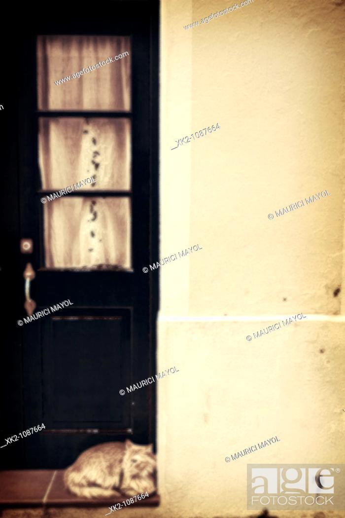 Stock Photo: gat descansant al portal d'una casa al casc antic de Ciutadella de Menorca, Illes Balears.
