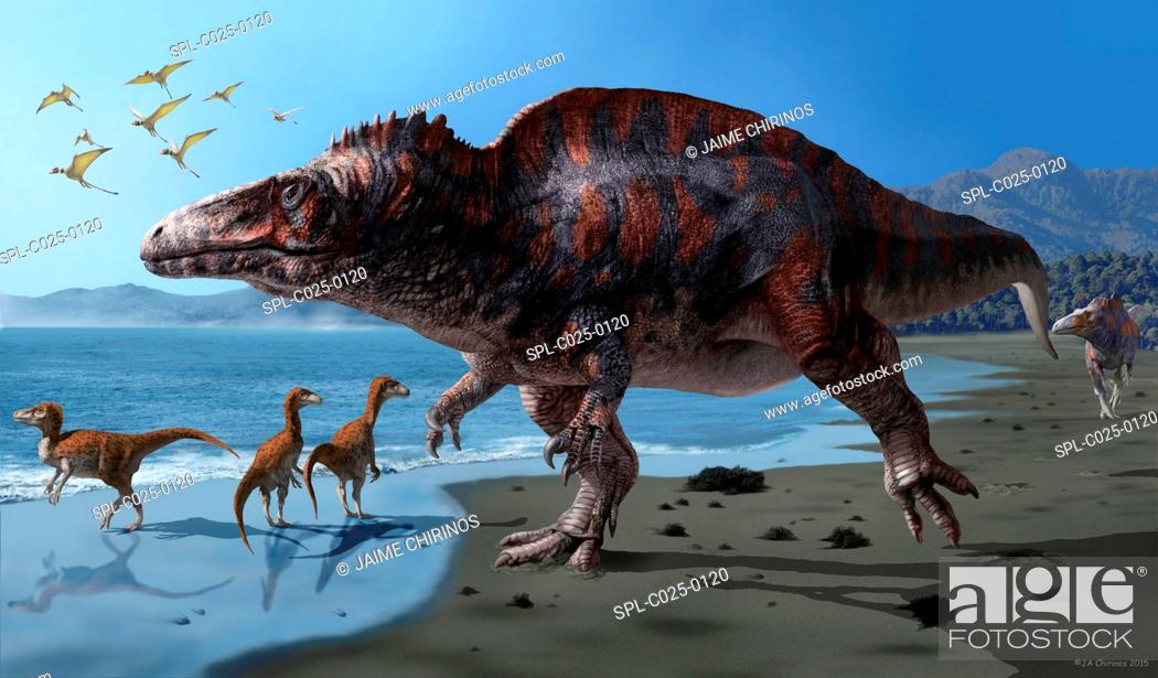 Stock Photo: Acrocanthosaurus (Acrocanthosaurus atokensis) artwork. This species of dinosaur lived between 116-110 million years ago (Early Cretaceous) in what is now North.