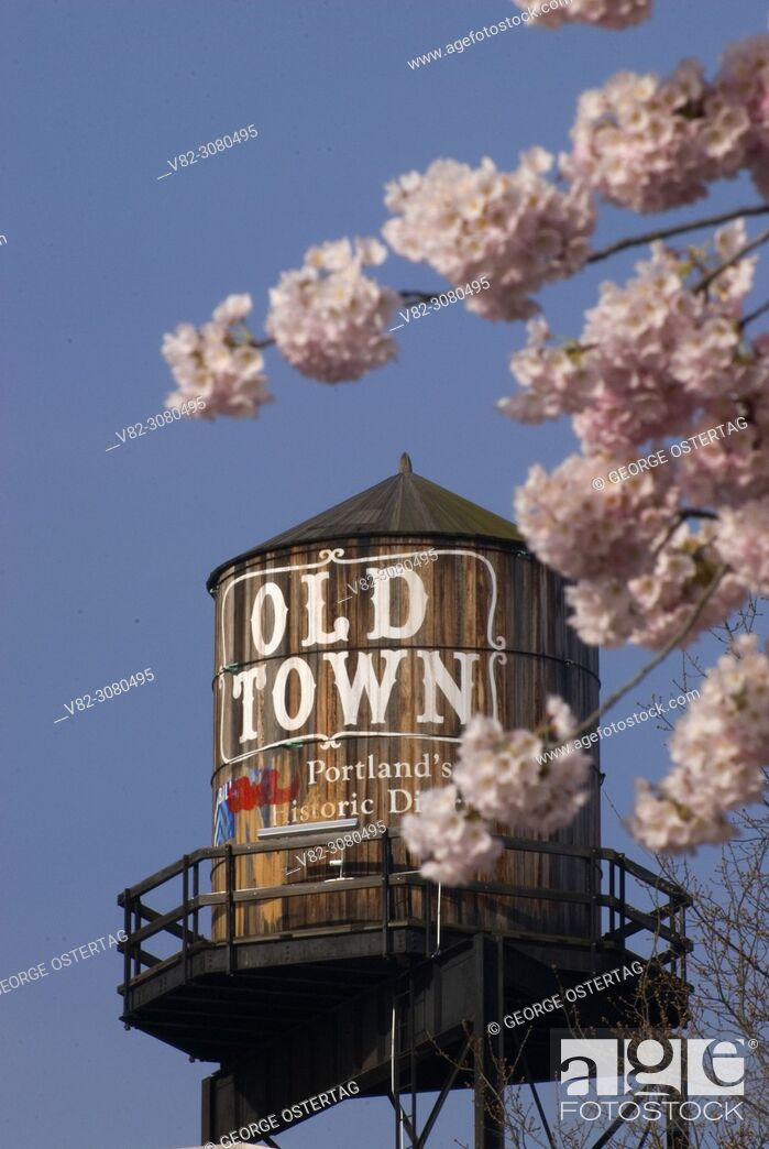 Stock Photo: Old Town Water Tower with decorative cherry trees, Tom McCall Waterfront Park, Portland, Oregon.
