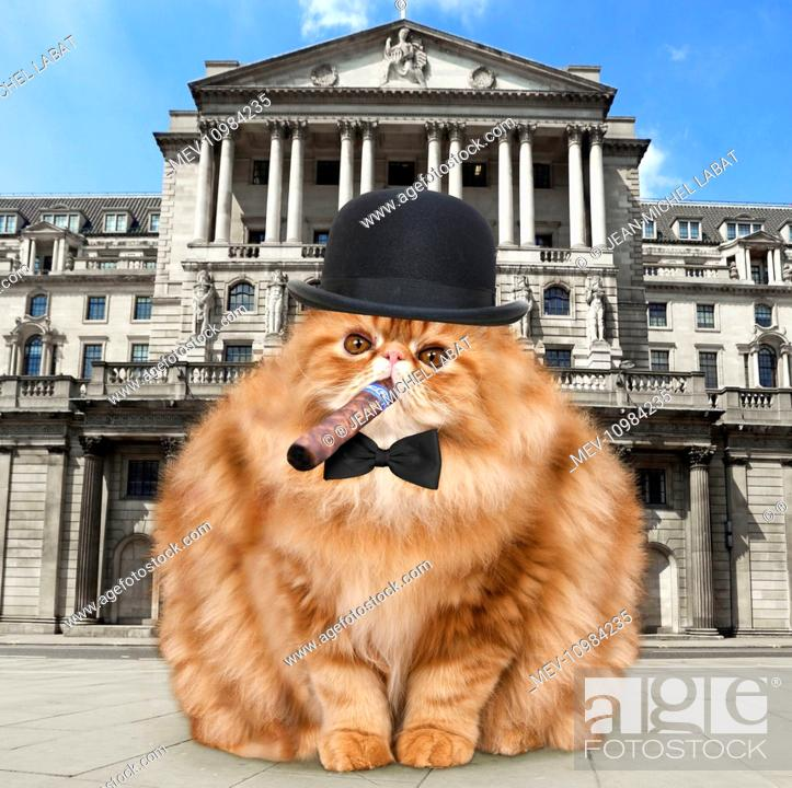 2ae74408f5a7d Stock Photo - Cat - fat cat with bowler hat bow tie   cigar outside the Bank  of England - London - UK Digital Manipulation