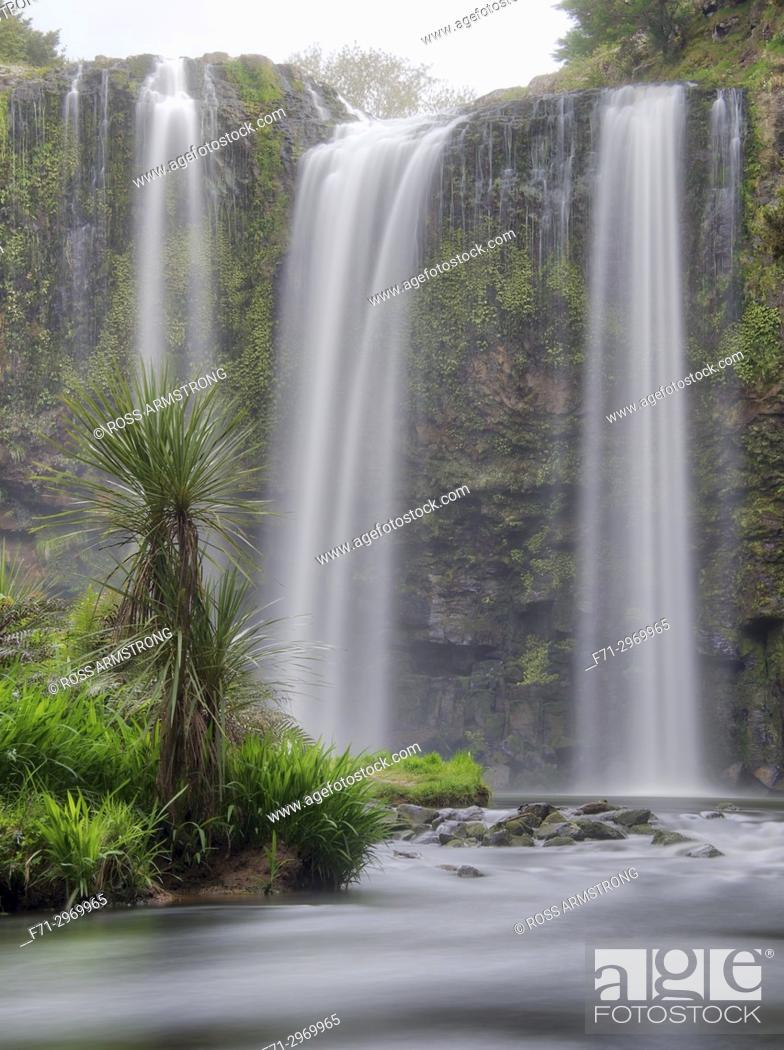 Stock Photo: Whangarei Falls is a picturesque waterfall, falling vertically for 26. 3 metres over basalt cliffs. Whangarei , Northland, New Zealand.