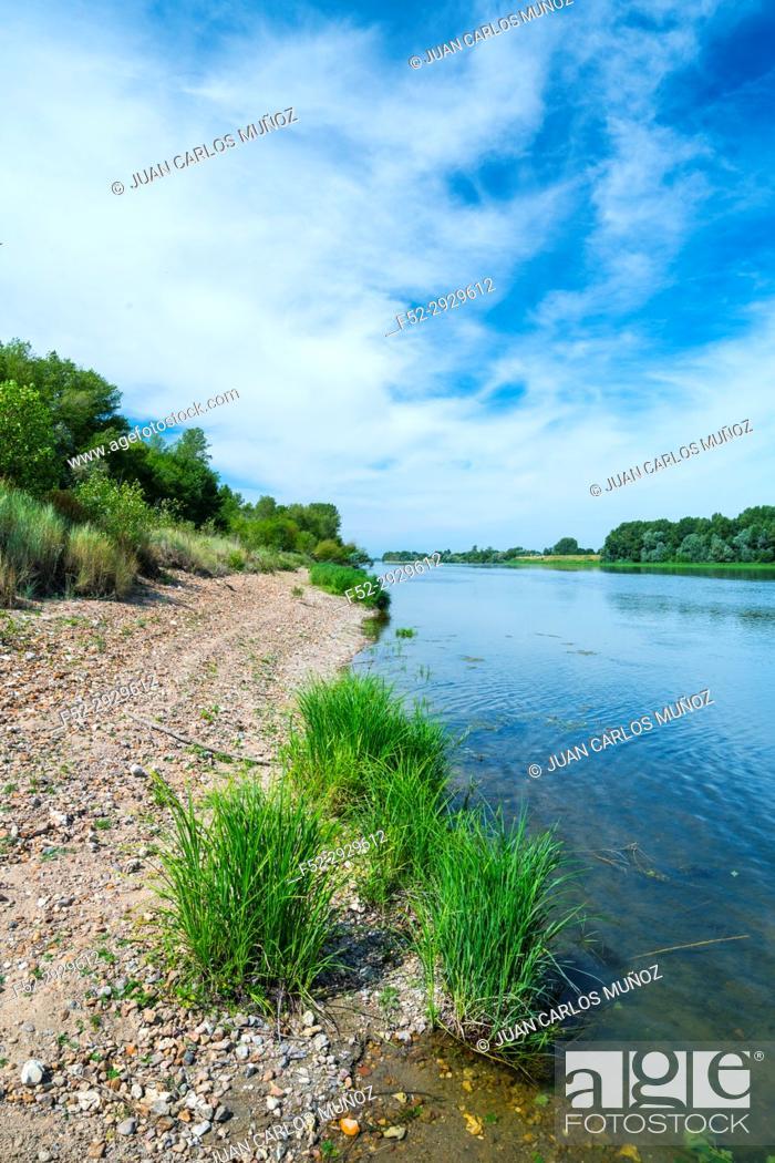 Stock Photo: Loire River, Chaumond-sur-Loire, Loir-et-Cher Department, The Loire Valley, France, Europe.