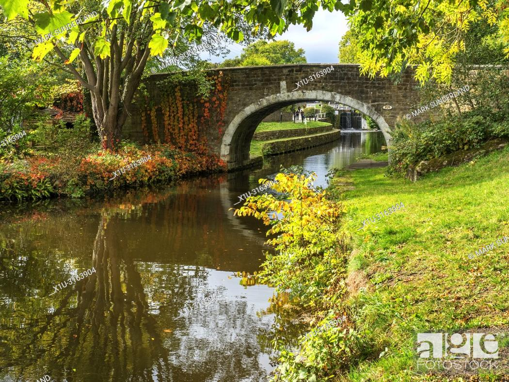 Imagen: Dowley Gap Packhorse Bridge on the Leeds and Liverpool Canal between Saltaire and Bingley West Yorkshire England.