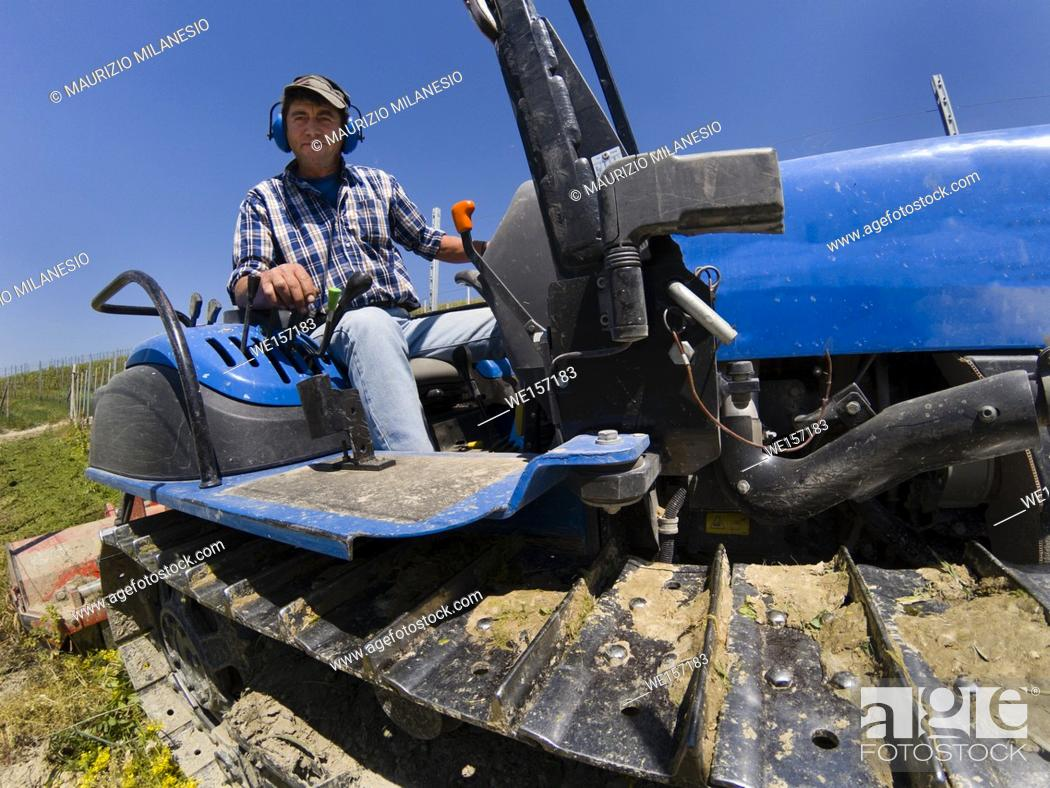 Stock Photo: Driver on crawler tractor with noise-free headphones works in the vineyard in the Langhe hills in Piedmont Italy.