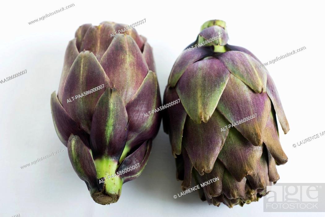 Stock Photo: Purple artichokes.