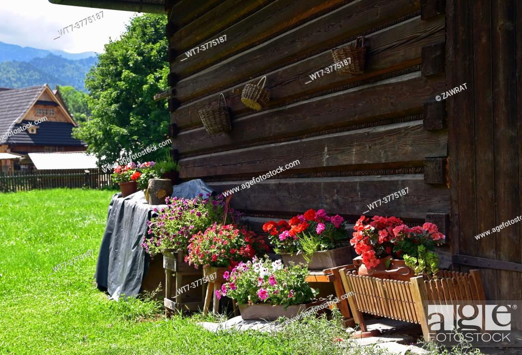Stock Photo: Flaowers behind the barn, Zakopane.