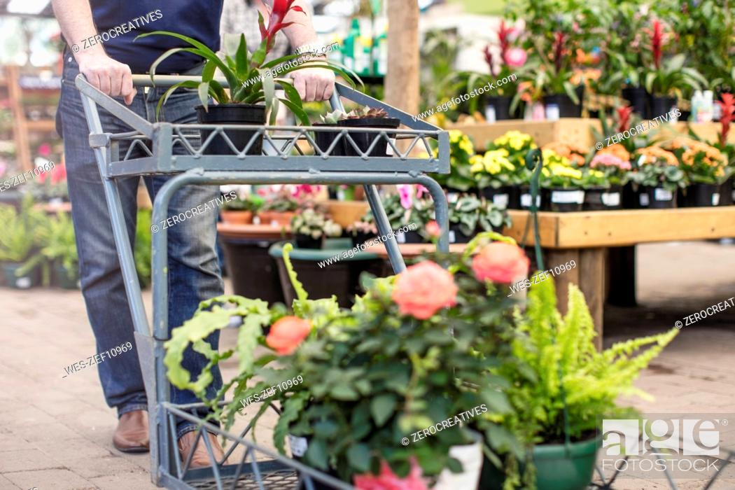 Stock Photo: Man pushing a trolley full of plants in garden centre.