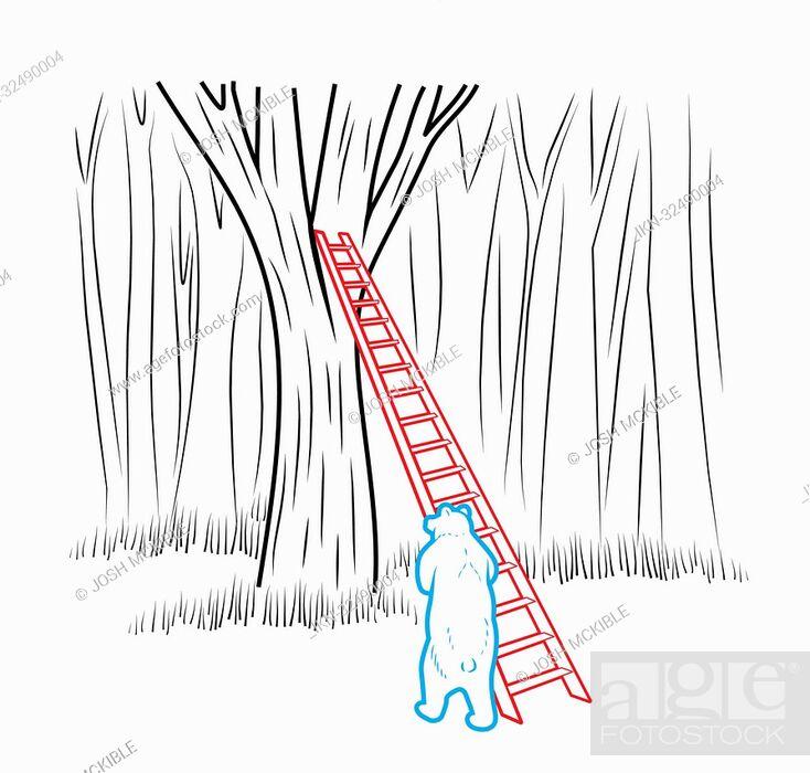 Imagen: Bear leaning ladder against tree.