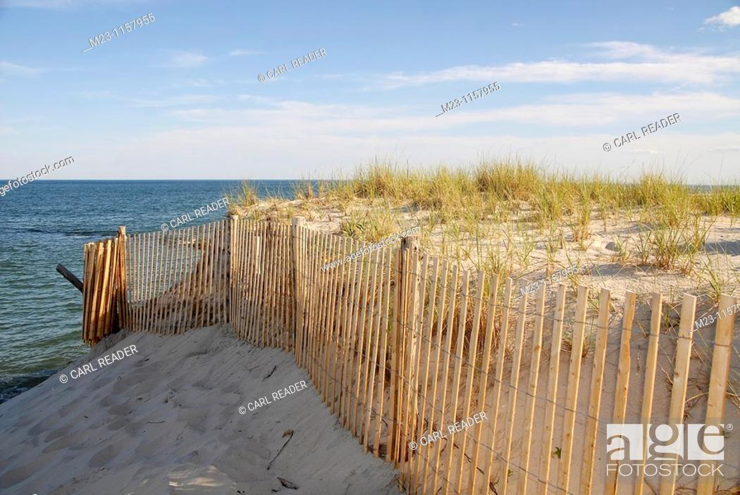 Imagen: A new fence supports an ancient set of dunes, Long Beach Island, New Jersey, USA.