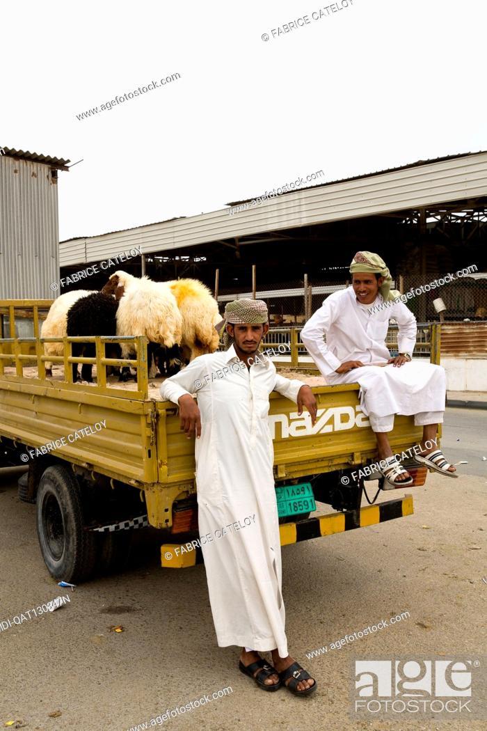 Stock Photo: Qatar - Doha - Wholesale market - Sheep and animal market, forage, straw.