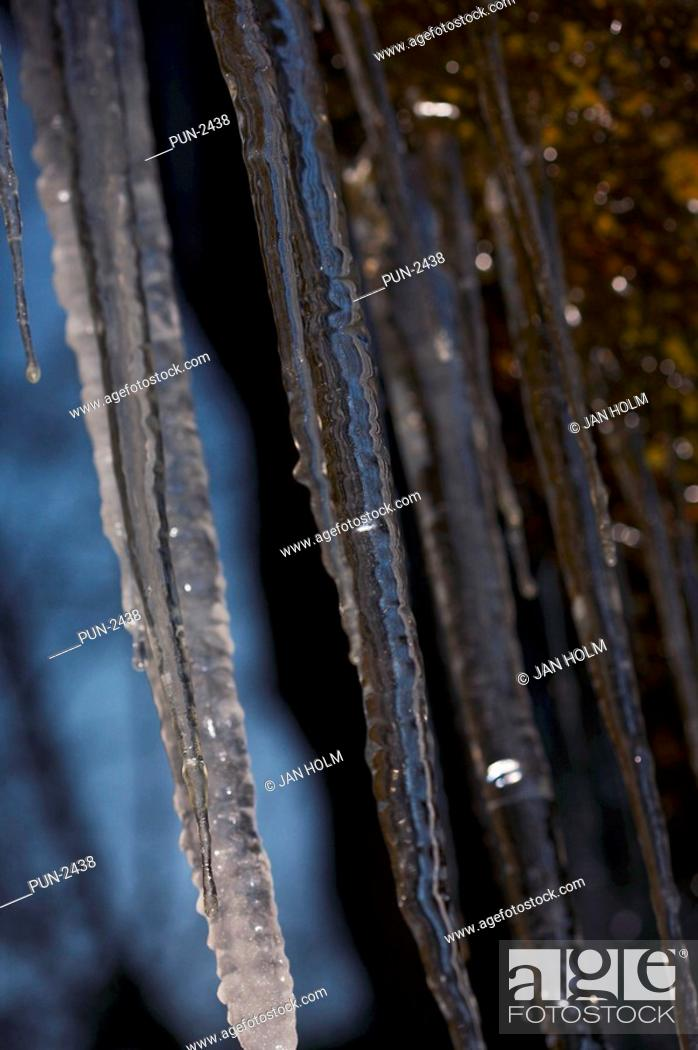 Stock Photo: Icicles in the Burn O' Vat.