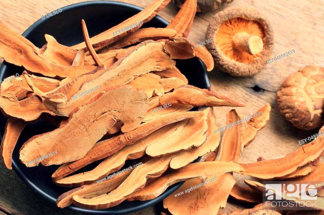 Stock Photo: Ganoderma lucidum.