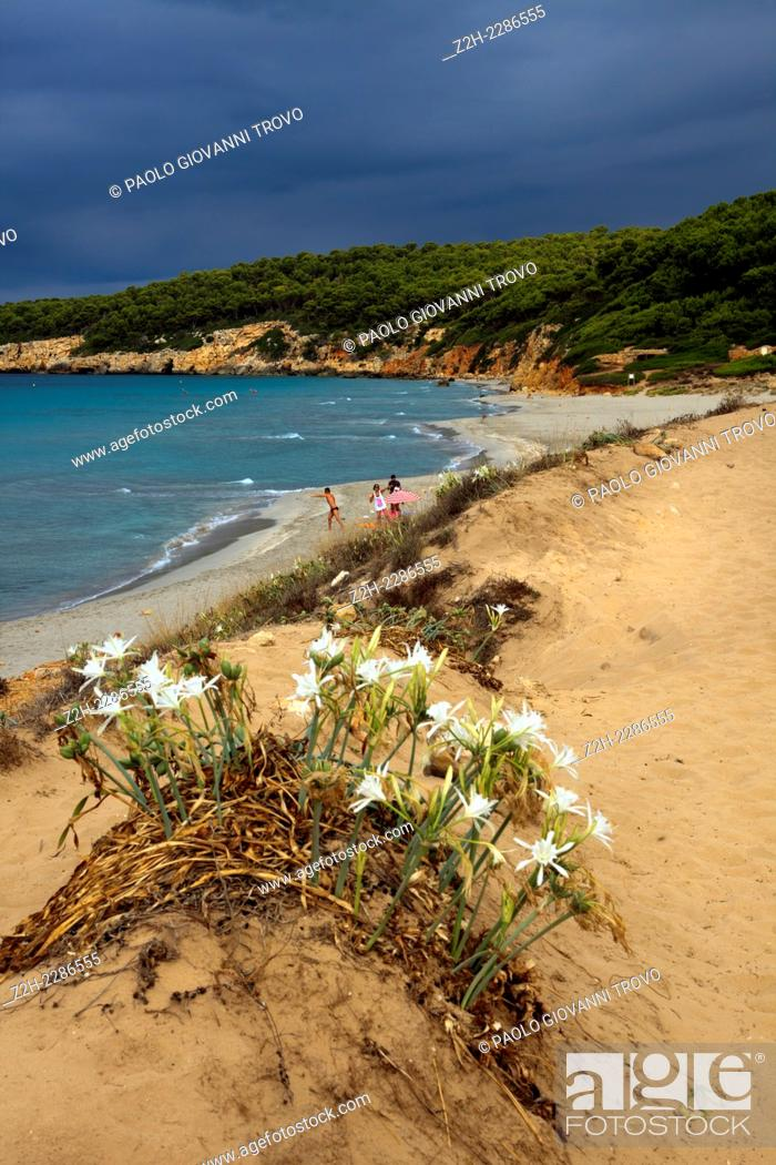 Stock Photo: Binigaus beach, Sant Tomas, Menorca, Balearic Islands, Spain.