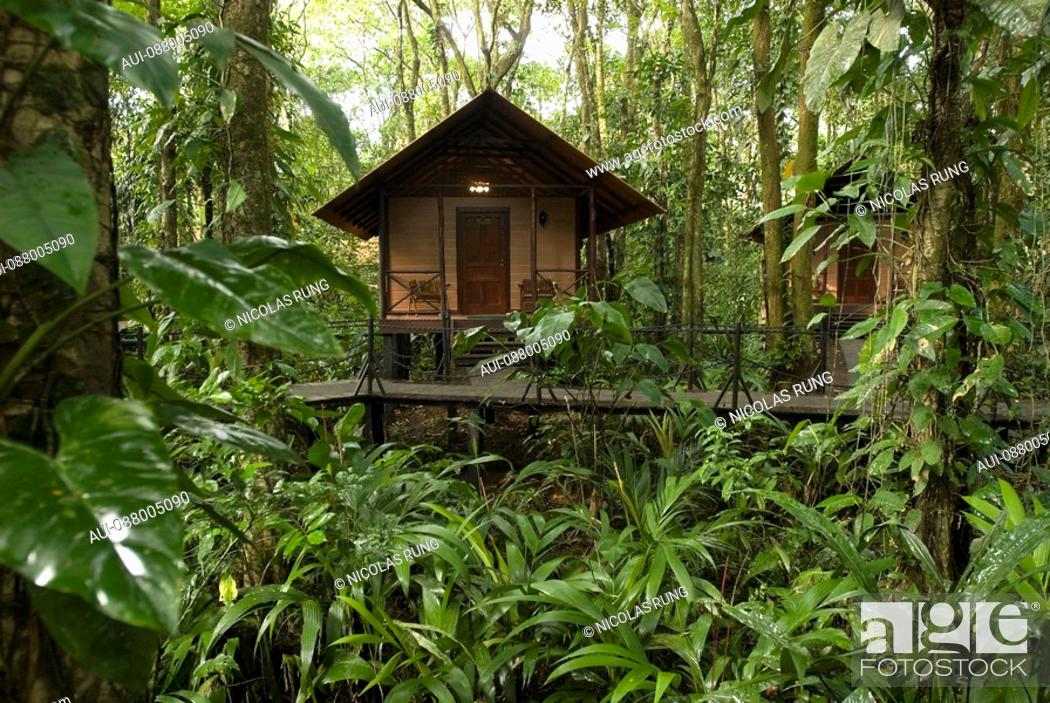 Stock Photo: Chalet into rainforest - Tortuguero.