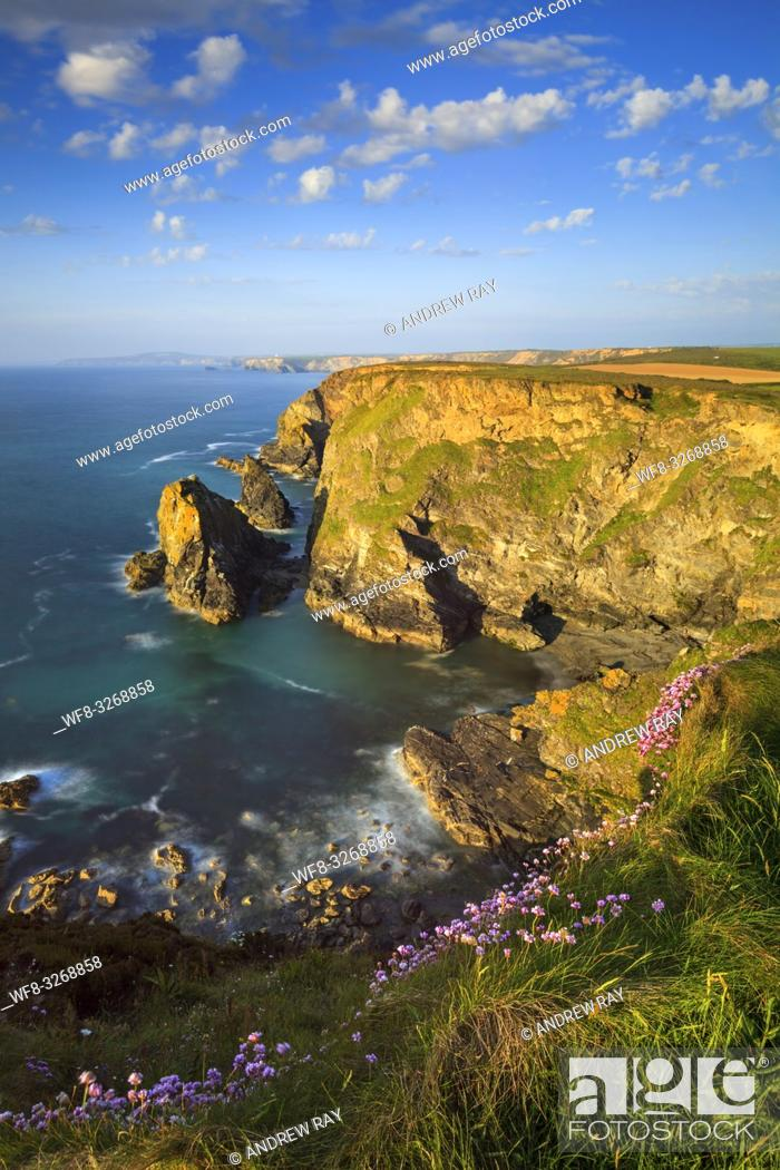 Stock Photo: Hell's Mouth on the North Coast of Cornwall, captured from the cliff top on an evening in early June when the sea thrift was in bloom.