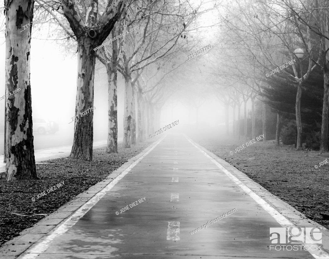 Stock Photo: Bike lane in a foggy morning. In Teruel, Spain.