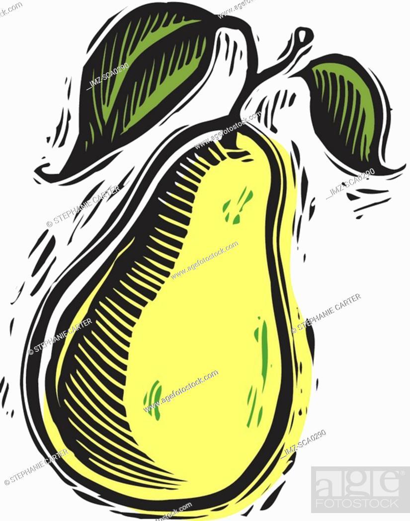 Stock Photo: fresh pear.