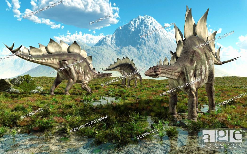 Photo de stock: Stegosaurus dinosaurs, computer artwork. Stegosaurs 'roofed reptiles' were herbivores that lived throughout the world during the Jurassic period.
