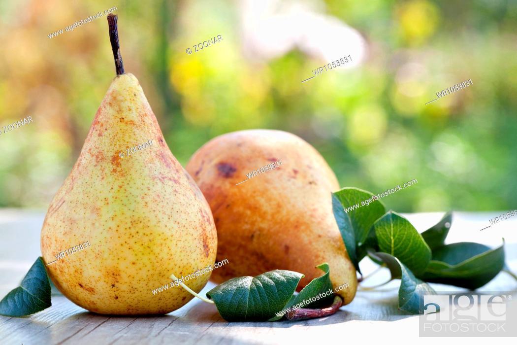 Stock Photo: Pears.