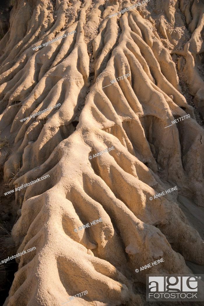 Stock Photo: Barren ground eroded from rainwater runoff in Dinosaur Provincial Park, Alberta, Canada.