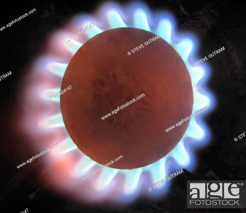 Stock Photo: Gas Flame on Cooker.