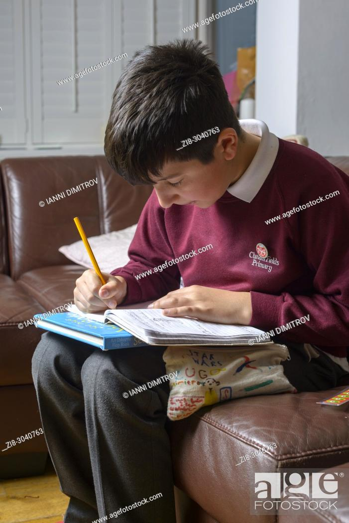 Stock Photo: Primary schoolboy works on his homework at home, Surrey, UK.