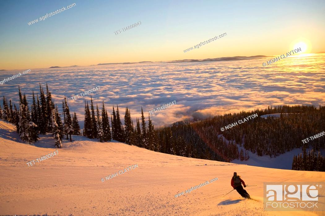 Stock Photo: USA, Montana, Whitefish, Mid adult woman skiing.