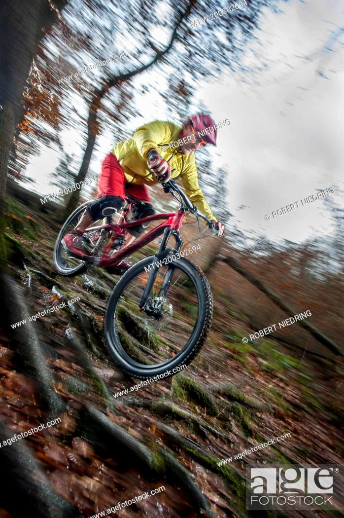 Imagen: Mountain biker riding downhill in a forest, Bavaria, Germany.
