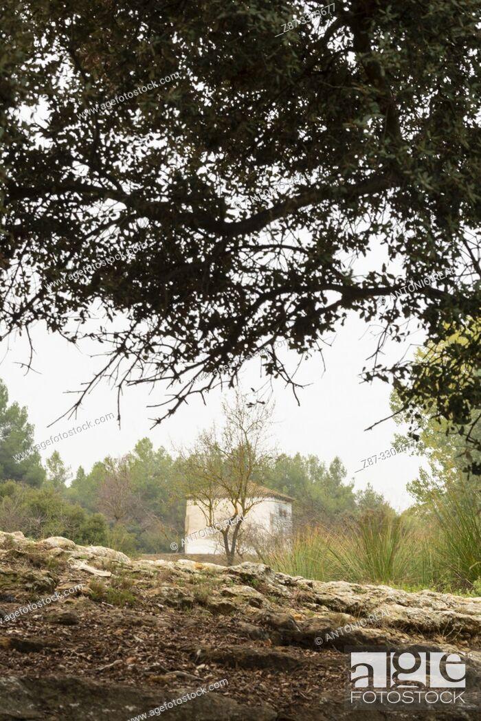 Stock Photo: La Mearrera. Almansa. Albacete province, Castile-La Mancha, Spain.