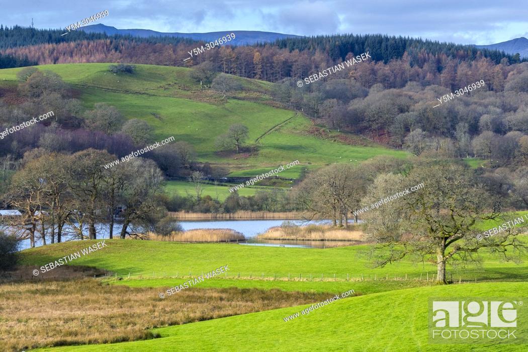 Stock Photo: Esthwaite Water, Lake District National Park, Cumbria, England, United KIngdom, Europe.