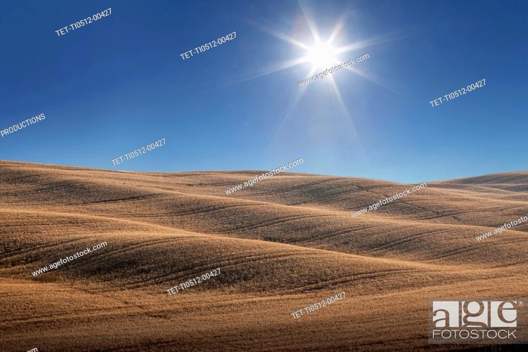 Imagen: Hills under sun.