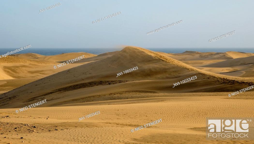 Photo de stock: Dunes on the beach of Maspalomas, Gran Canaria, Canary Islands, Spain.