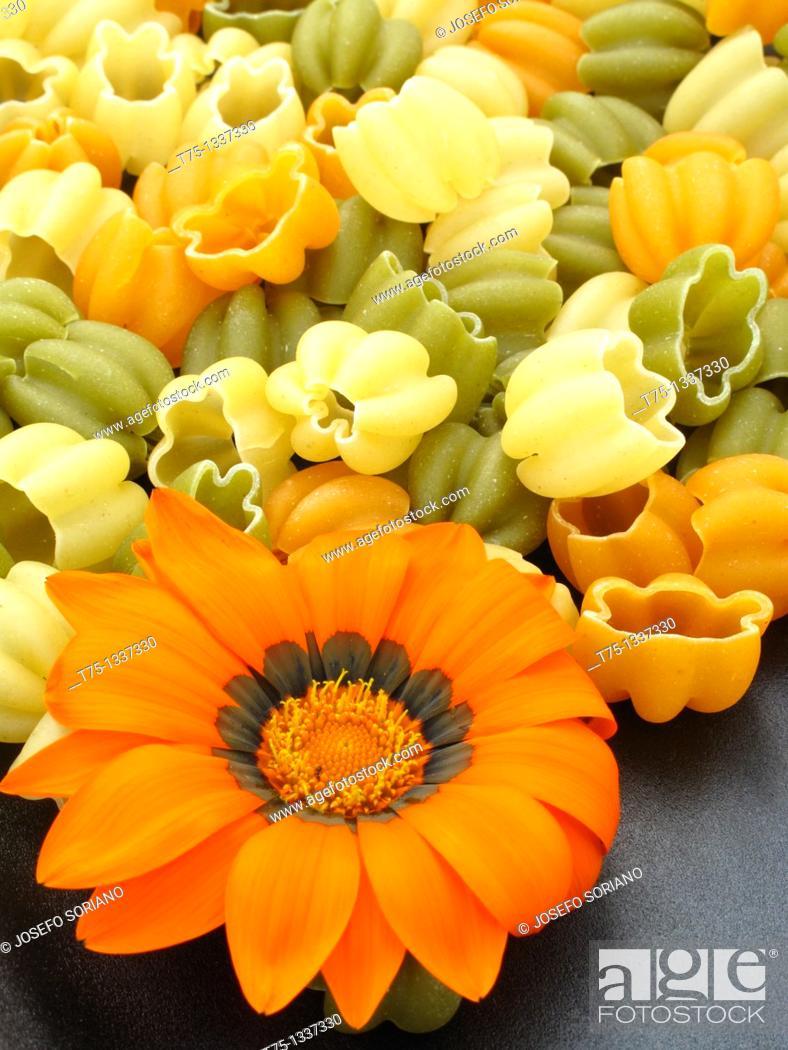 Stock Photo: Italian pasta, tulips.