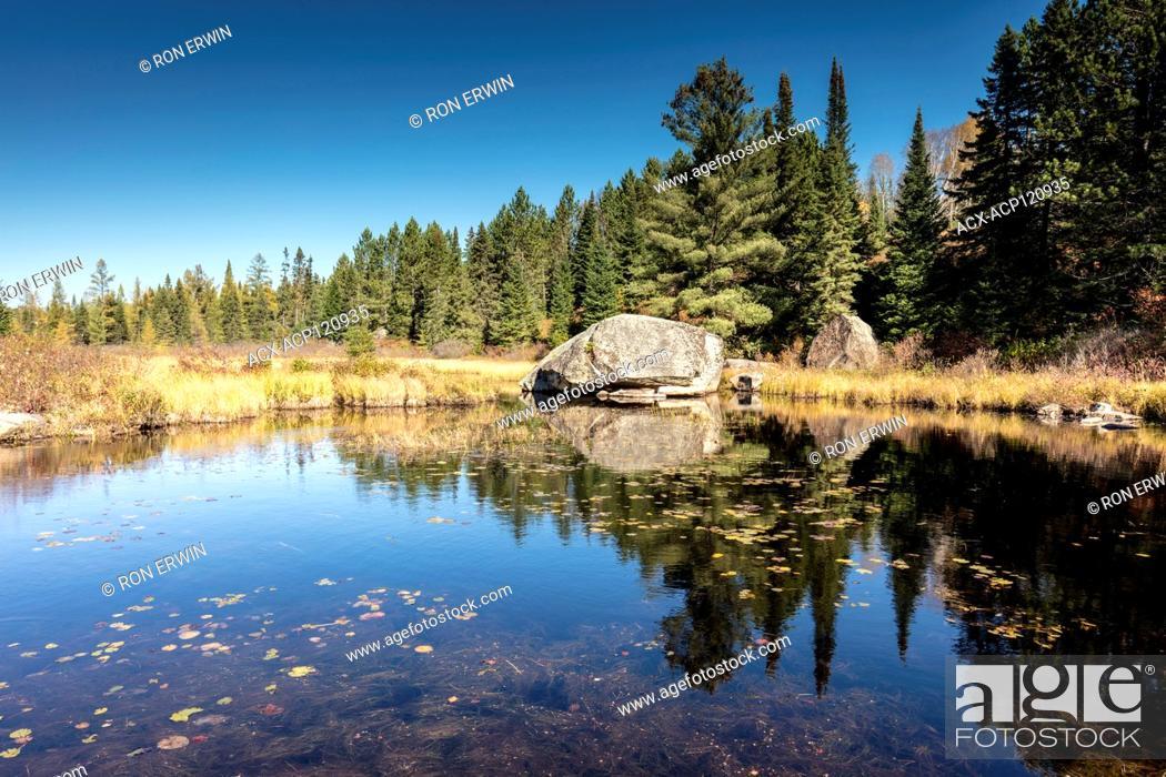 Stock Photo: Rock in Algonquin Provincial Park, Ontario, Canada.