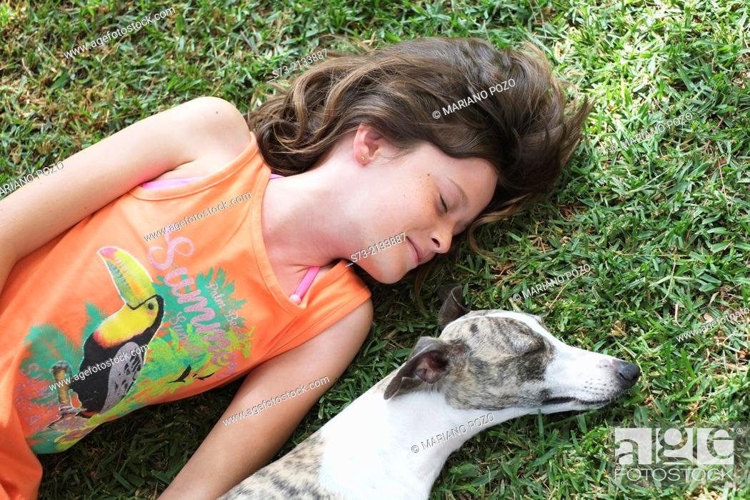 Stock Photo: Whipped dog and girl sleeping.