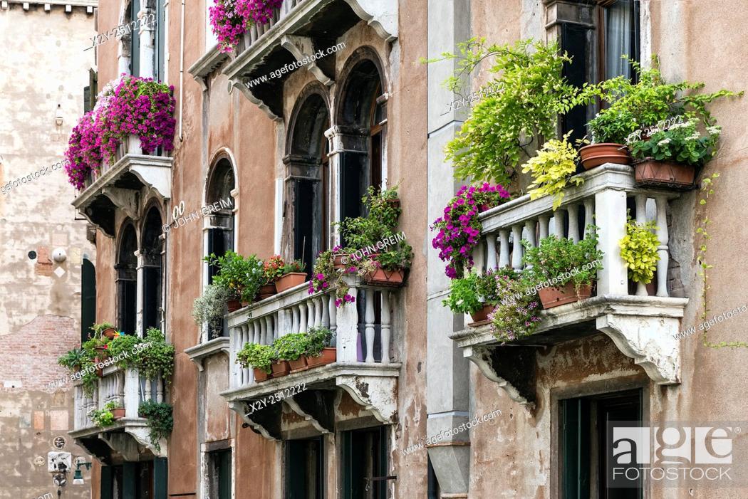 Stock Photo: Flowers and plants adorn the Venetian balconies, venice, Italy.