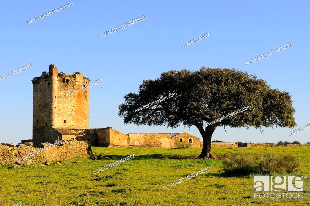 Stock Photo: Medieval tower of Los Mogollones. Cáceres. Extremadura. Spain.