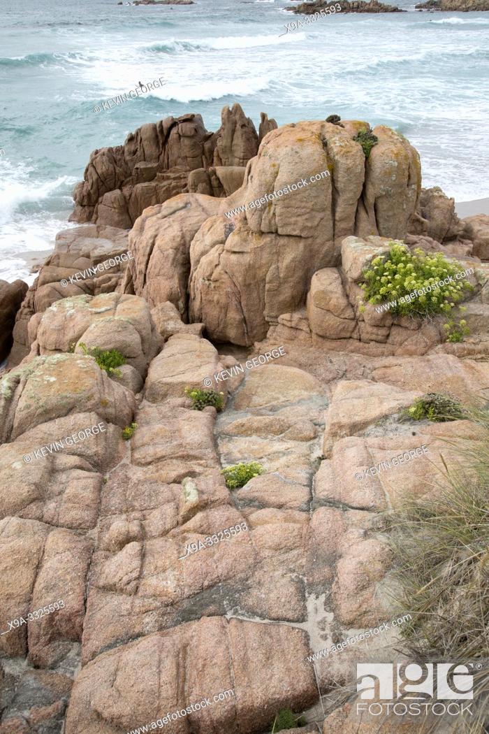 Stock Photo: Plants and Rocks at Forcados Point Beach; Costa de la Muerte; Galicia; Spain.